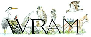 WRAM Wildlife Rehabilitators' Association of MA